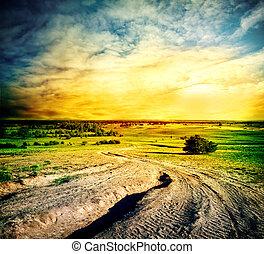 Winding road in a sandy field