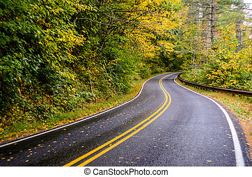 Winding Road in Fall - A wet road shines after a rainy fall ...