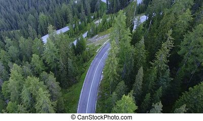 Winding road in green coniferous forest. Cars drive along a mountain road between coniferous trees. Aerial drone view