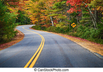Winding road through autumn trees in New England - Winding ...