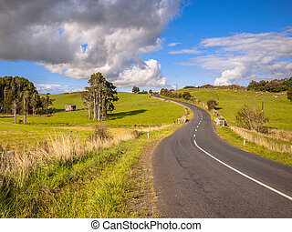 Winding Road Through Green Hilly Landscape in Northland, New Zea