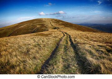 winding road through meadows of mountain range