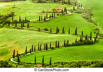 Winding road to agritourism in Italy on the hill