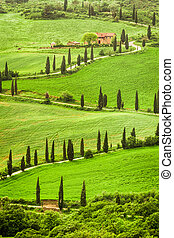 Winding road to agritourism in Italy on the hill, Tuscany