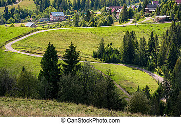 winding road to village through grassy hillside with spruce...