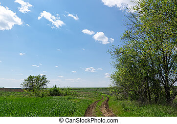 winding rural road to horizon under cloudy sky
