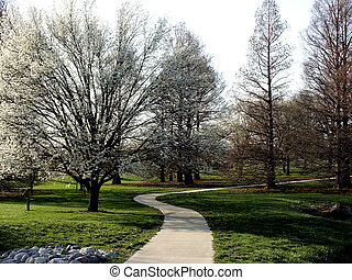 Winding Walk - Winding walkway though Midwestern university...