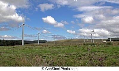windkraftwerke, in, a, feld, in, schottland