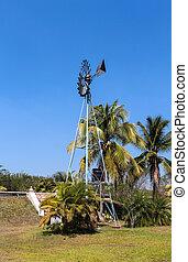 windmühle, auf, der, feld