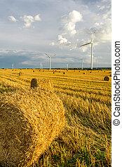 windmühle, auf, der, feld, mit, stoppel