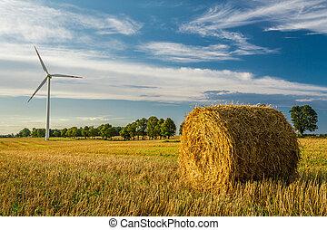 windmühle, auf, der, feld, produzieren, gesunde, energie