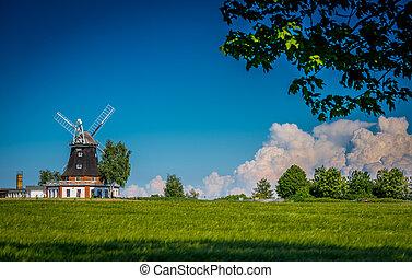 windmühle, in, fruehjahr, hinten, a, getreidefeld