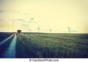 windmühlen, auf, der, field.