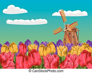 Windmill and Tulips - Cartoon landscape with a traditional...