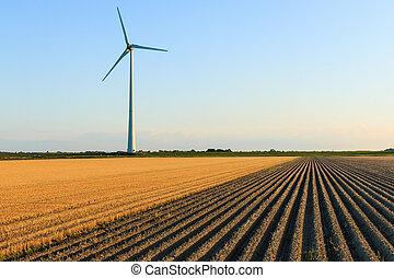 Windmill at farmer fields - Windmillat sunset at a farmer...