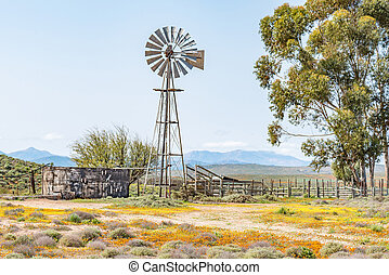 Windmill, dam and a kraal - A water pumping windmill, dam...