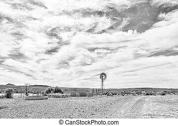 Windmill, dam and sheep near Middelpos. Monochrome