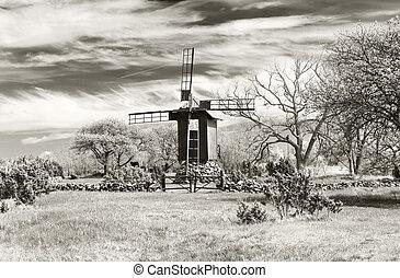 Windmill in a garden