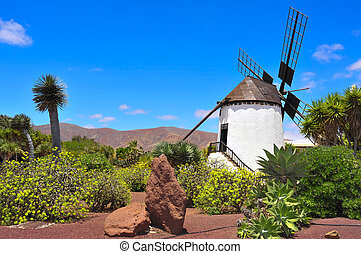 windmill in Antigua, Fuerteventura, Canary Islands, Spain -...