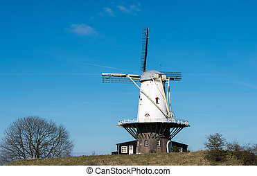 dutch thesis flour mills windmill with blue sky on a dike in the village Veere
