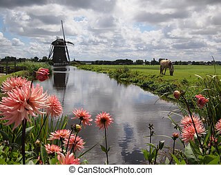 Typical landscape in Holland with a windmill, clouds, flowers and a horse.