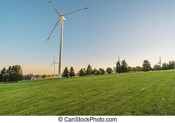 Windmill park on a meadow
