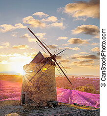 Windmill with levander field against colorful sunset in...