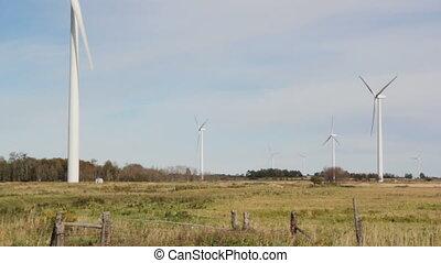 Windmills in field.