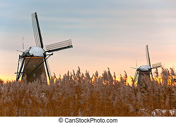 windmills in Kinderdijk at winter sunset