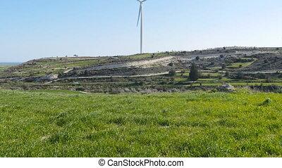 Windmills on the field