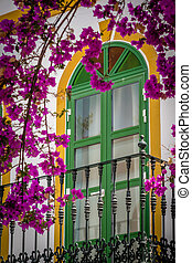 Window and purple flowers - Window in one of the homes in...