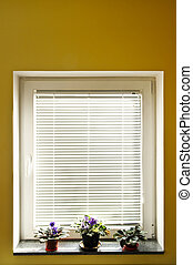 Window blinds - Horizontal blinds on window with three...
