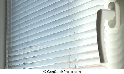 Window Blinds Up