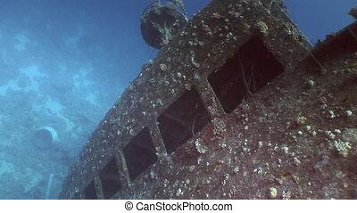 Window close up in Salem Express shipwrecks underwater in...