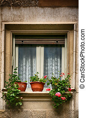 Window decorated with fresh flowers in pots in Spain