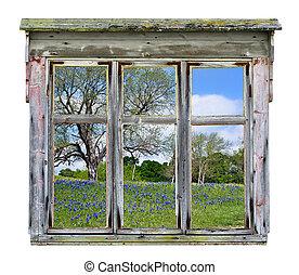 Window frame with bluebonnet vista