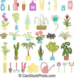 Window gardening infographic elements