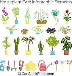 take care of indoor flowers - Window gardening infographic...