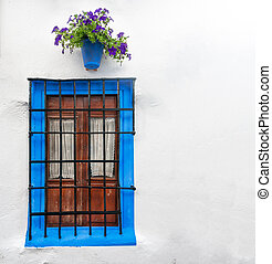 Big wall decorated in old style in Cordoba, Andalucia. Rural design of house in Spain, Europe. Blue framed wooden window with steel bars and white curtains inside. Blooming flower in pot above window.