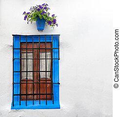 Window in Cordoba, Andalucia in Spain, Europe. - Big wall ...