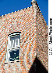 Window in Old Brick Wall