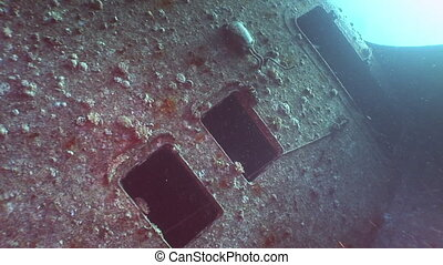 Window in Salem Express shipwrecks underwater in the Red Sea...