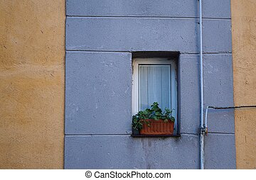 window in the house