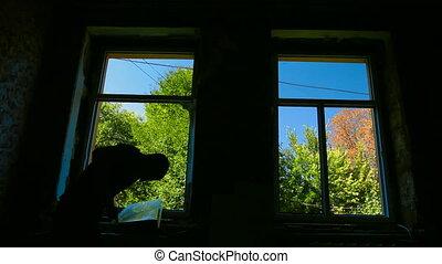 Window Installer at Work