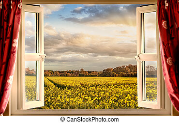 Window open with a view onto farm crops