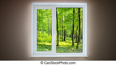 Window with a kind in the forest