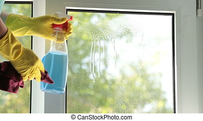 Female hands washing the window at home