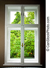 Big double window and green tree leaves