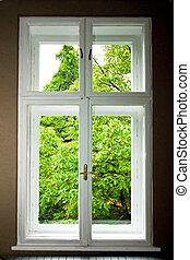Window Window - Big double window and green tree leaves