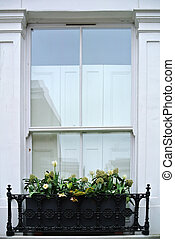 window with decorative flower pots